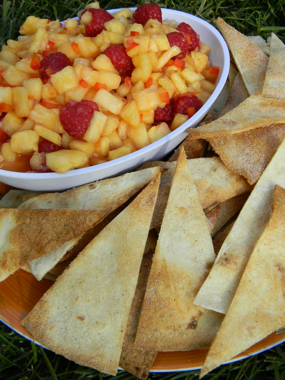 Fruit Salsa & CinnamonCrisps
