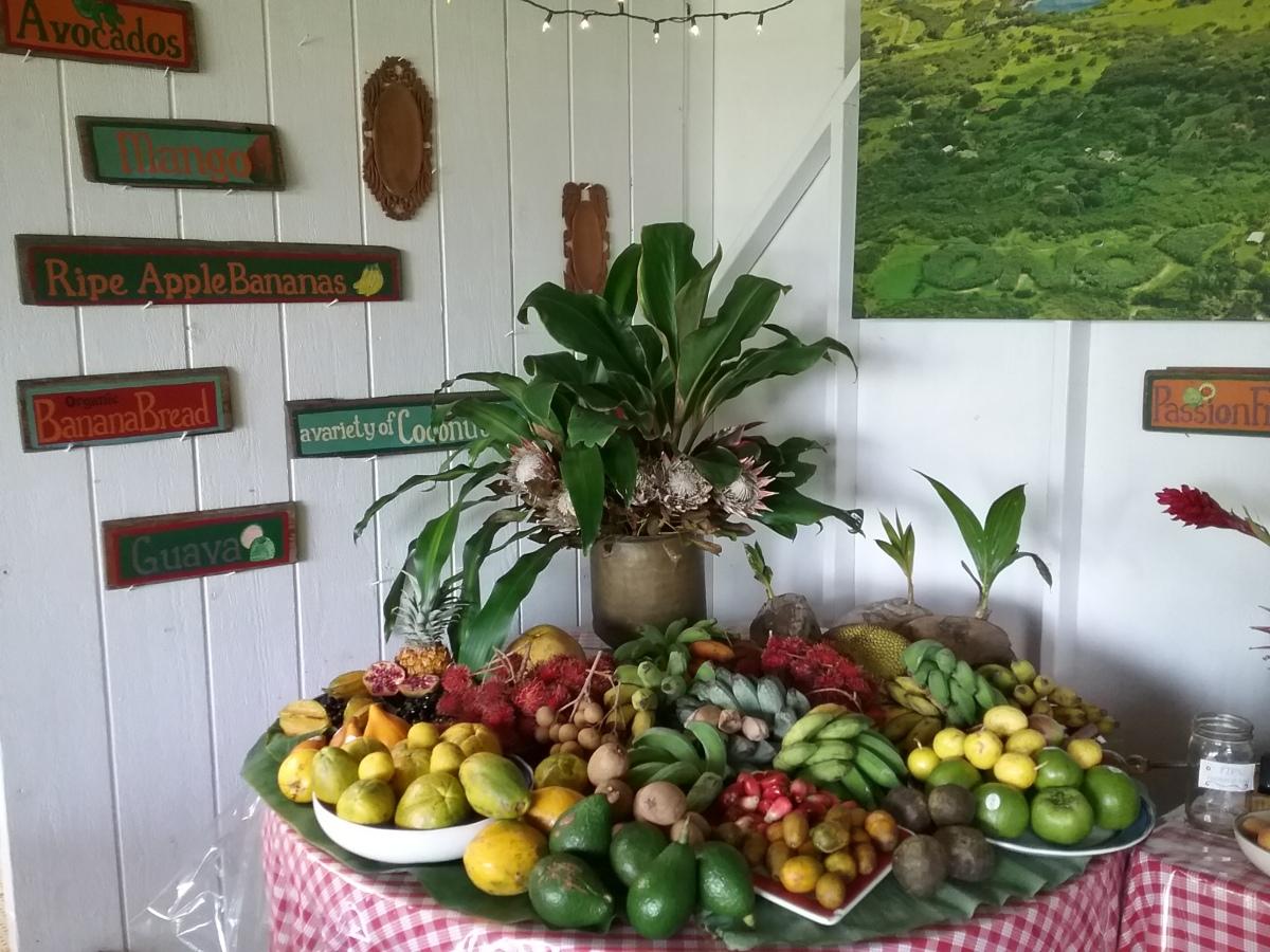 Maui Adventures: Tropical Fruit Tasting inHana